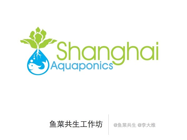 Aquaponics workshop 001